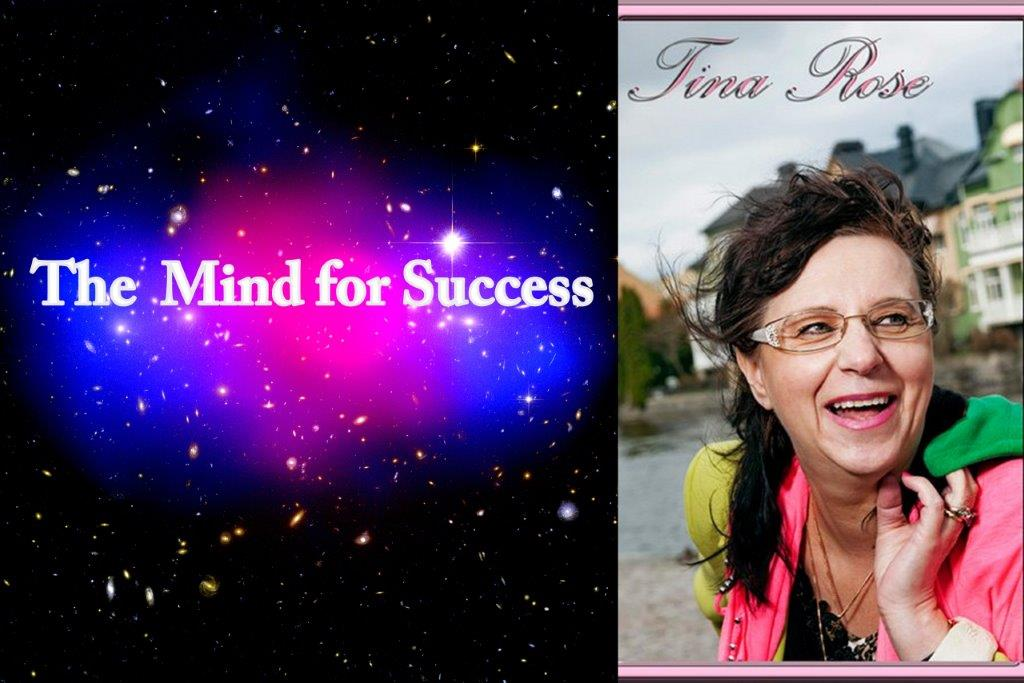 mind for success rätt